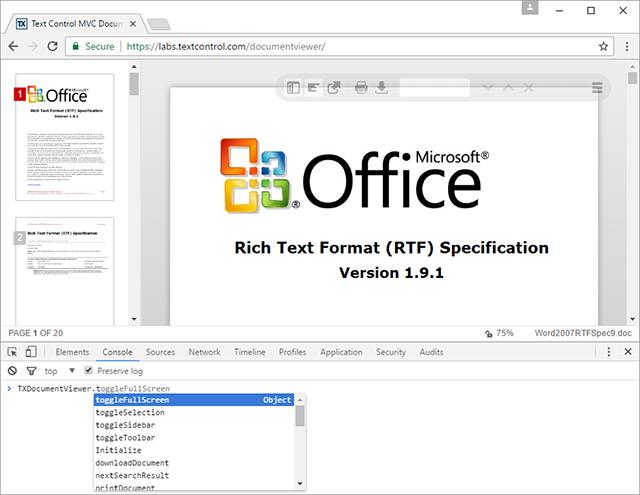 Using the ASP NET MVC DocumentViewer JavaScript API