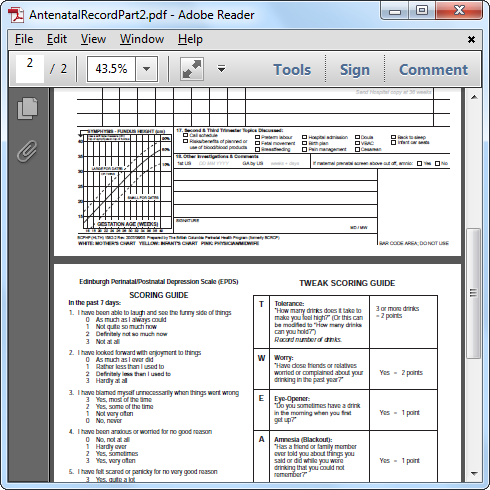 Original PDF opened in Acrobat Reader