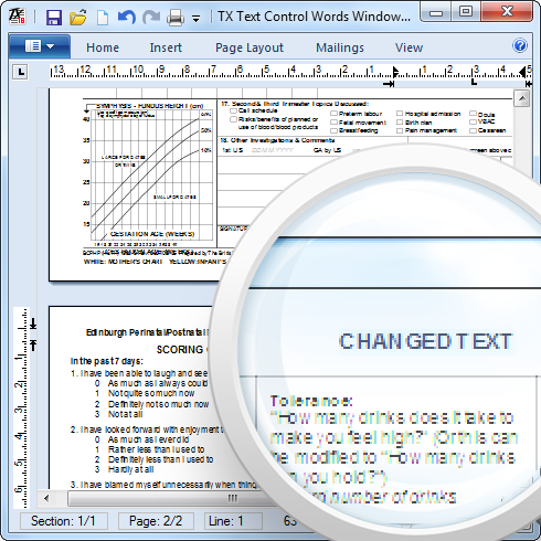 PDF opened in TX Text Control 18.0 (Beta)