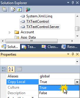 TX Text Control in Windows Azure