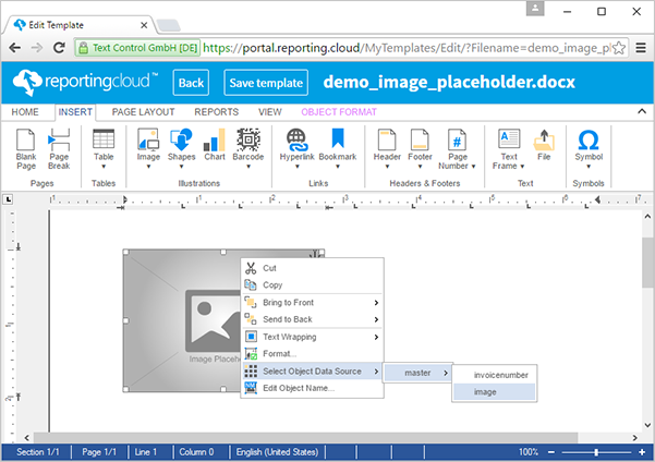 ReportingCloud: Merging images into image placeholders