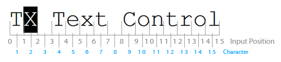 TX Text Control input positions