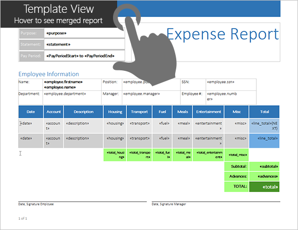 Expense Report Template in Detail