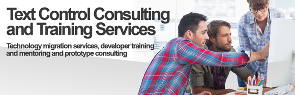 Text Control Consulting Services
