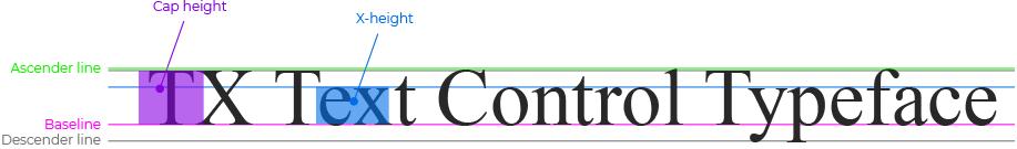 TX Text Control Character Attributes